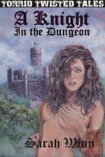 A Knight in the Dungeon cover